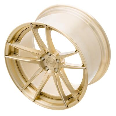 YP 1.2 Forged  Gold Digger Edition